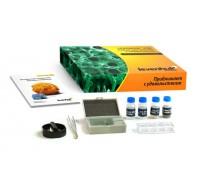 Набор готовых микропрепаратов Levenhuk K50